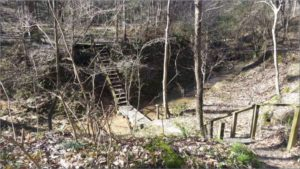 Mary Ann Brown Preserve- Hiking Trail Bridge and Stairs