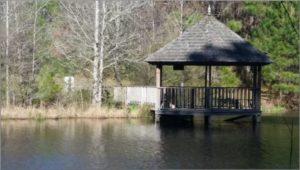 Mary Ann Brown Preserve Gazebo Near Lake